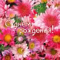 Поздравляем Оленьку Князеву!!!